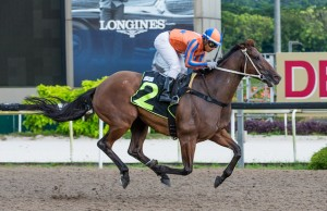EATONS GOLD winning for eighth time Singapore 15th January - Click to enlarge