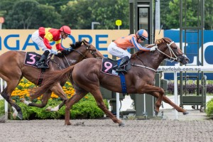 LADY IFFRAAJ wins again in Singapore 31st Jan 2016