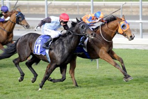 HIGHLY LIKELY strides to lead Matamata 27th August. Picture courtesy of Race Images