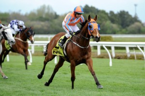 HIGHLY LIKELY in action Te Rapa 2nd October
