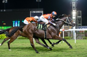 King Savinsky winning in Singapore 6th November 2015. Click to enlarge